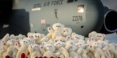 Image shoing a great pile of bears in front of a C17 at RAF Brize Norton